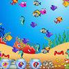 Fishda Fish